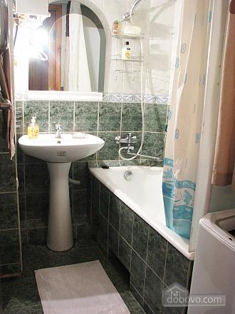 Апартаменти в центрі міста, 2-кімнатна (45760), 008