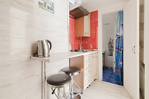 Квартира біля Дерибасівської, 1-кімнатна, 012