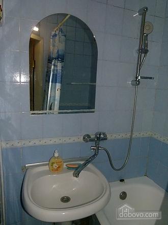 Cozy and clean near the city center, Un chambre (78721), 007