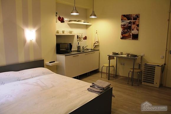 Апартаменты люкс, 1-комнатная (48013), 015