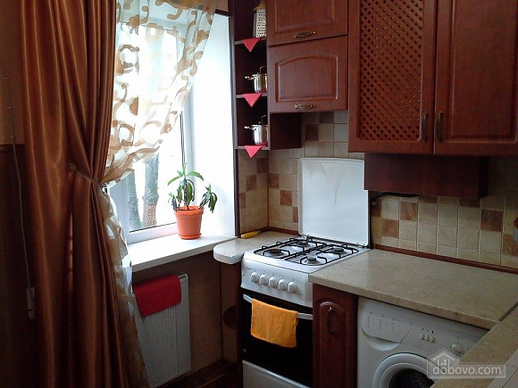 Cozy apartment in the center of Kherson, Studio (65801), 009