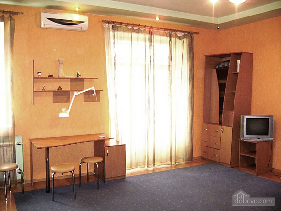 Comfortable apartment near the railway station, Studio (31054), 002