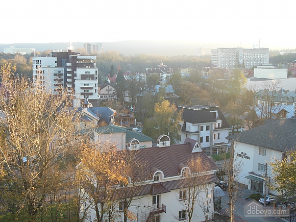 Apartment in the center of Truskavets, Una Camera (70955), 007
