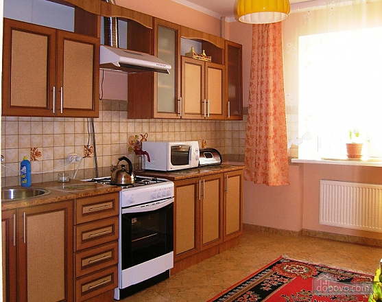 Beautiful apartment in Truskavets, Un chambre (52724), 005