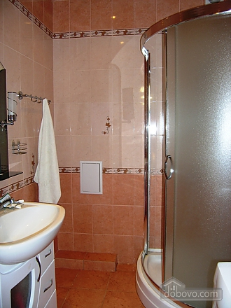 Beautiful apartment in Truskavets, Un chambre (52724), 007