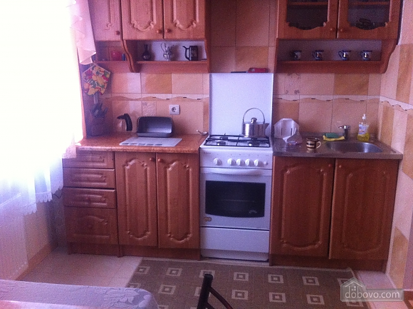 Rent a cheap apartment in Truskavets, Un chambre (74976), 004