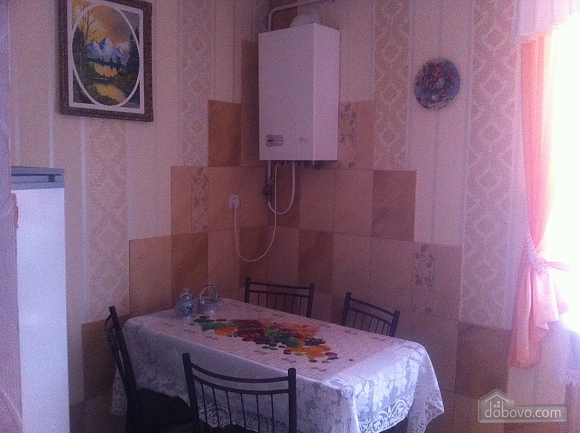 Rent a cheap apartment in Truskavets, Un chambre (74976), 005