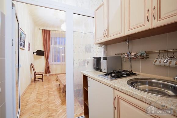 Квартира в центре, 1-комнатная (16719), 002