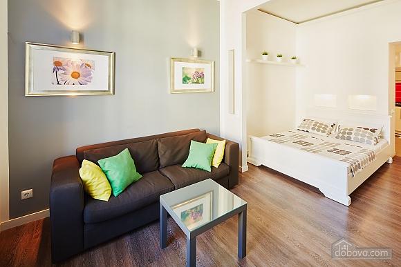 Стильная квартира в центре Львова на улице Братьев Рогатинцев, 1-комнатная (33949), 001