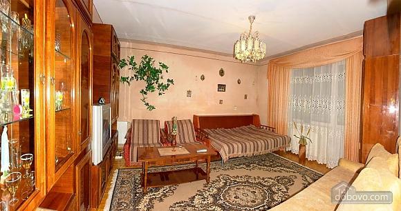 Apartment in Truskavets, Studio (55422), 002