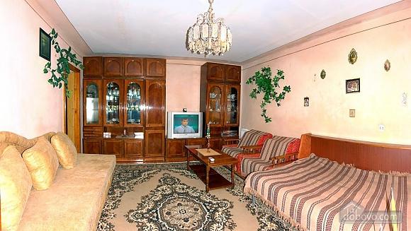 Apartment in Truskavets, Studio (55422), 001