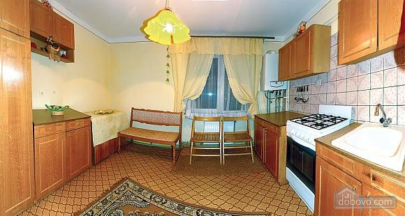 Apartment in Truskavets, Studio (55422), 004
