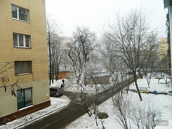 Apartment in the center, Un chambre (58363), 019