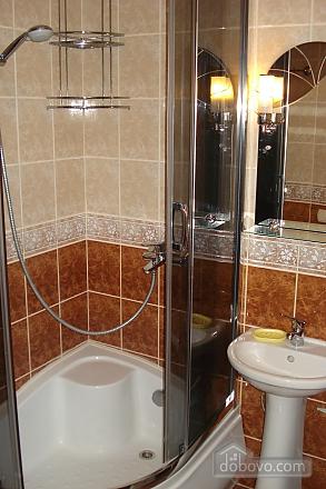 Apartment in Truskavets, Zweizimmerwohnung (82894), 008