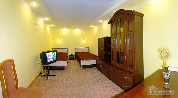 Apartment in Truskavets near buvet, Studio (97051), 002