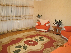 Apartment with new renovation in the central part of the city, Studio, 003