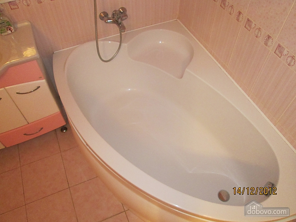 Apartment with new renovation in the central part of the city, Studio (69810), 007