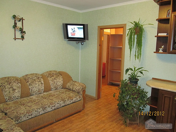 Apartment with new renovation in the central part of the city, Studio (69810), 012