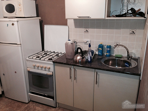 Apartment with nice renovation in the capital, Studio (97286), 004