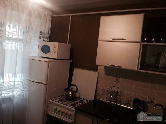 Apartment with nice renovation in the capital, Studio (97286), 006