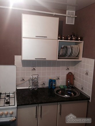 Apartment with nice renovation in the capital, Studio (97286), 009