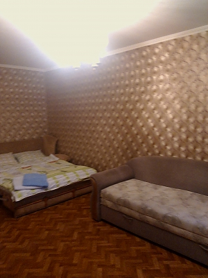 Apartment near Beresteiska metro station, Studio, 001