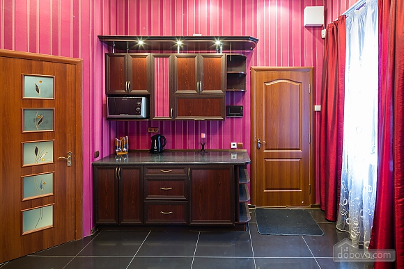Apartment with designer's renovation near Rynok Square, Monolocale (10123), 009