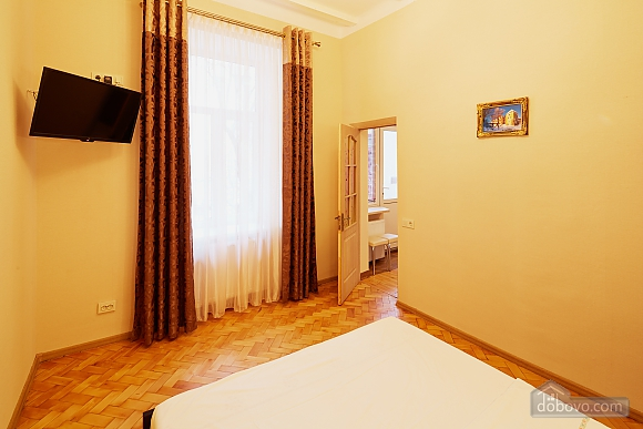 Apartment in the city center, Studio (44220), 010