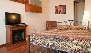 Luxury apartment on Lenina Ave, Studio, 001
