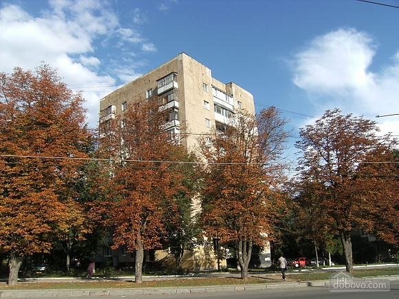 Luxury apartment on Lenina Ave, Studio (86483), 013