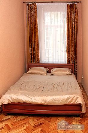 Квартира у центрі Львова, 2-кімнатна (45347), 001