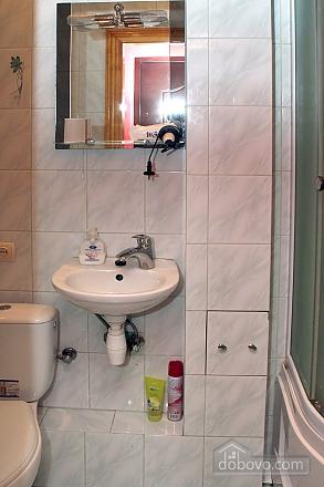 Квартира у центрі Львова, 2-кімнатна (45347), 004