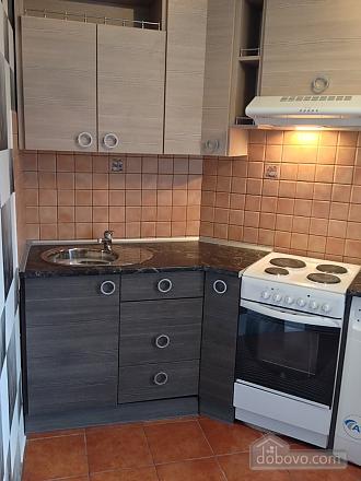 Comfortable apartment, Una Camera (70692), 003