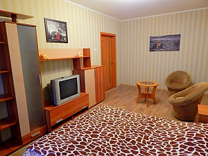 Apartment on Lukianivka, One Bedroom, 001