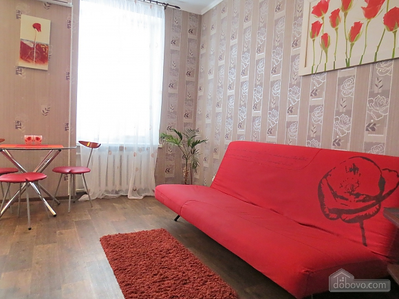Pretty apartment with a good repair, Un chambre (36114), 002