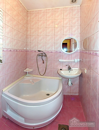 A great apartment in Truskavets, One Bedroom (45245), 003