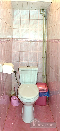 Отличная квартира в Трускавце, 2х-комнатная (45245), 005