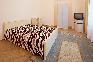 Apartment in the Centre of Lviv with Wi-Fi, Monolocale, 001