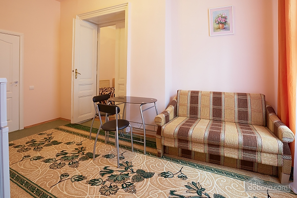 Apartment in the Centre of Lviv with Wi-Fi, Studio (48515), 004