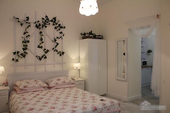 Романтична квартира біля Оперного театру з кондиціонером, 1-кімнатна (74190), 005