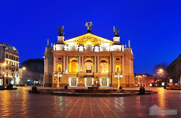 Романтична квартира біля Оперного театру з кондиціонером, 1-кімнатна (74190), 022