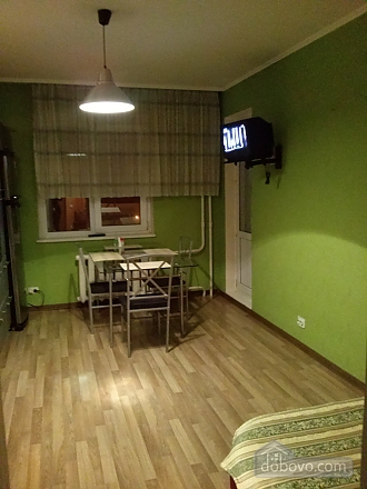 Modern apartment in a new house with Wi-Fi, Studio (87656), 009