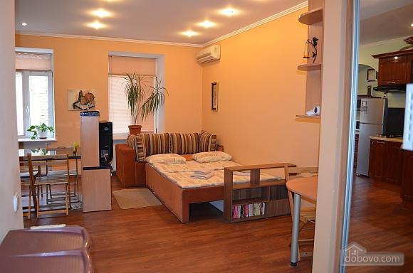 Studio apartment on Mala Zhytomyrska (556), Studio (11444), 017