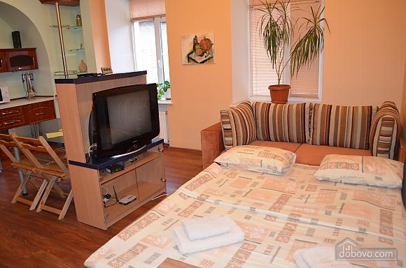 Studio apartment on Mala Zhytomyrska (556), Studio (11444), 021