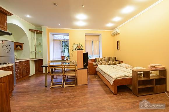 Studio apartment on Mala Zhytomyrska (556), Studio (11444), 013