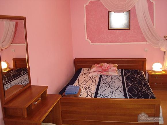 Cozy in Truskavets, Zweizimmerwohnung (94375), 001