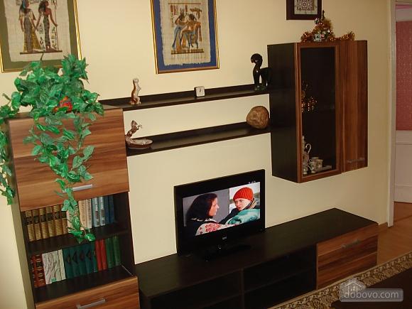 Cozy in Truskavets, Zweizimmerwohnung (94375), 004