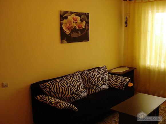 Cozy in Truskavets, Zweizimmerwohnung (94375), 006