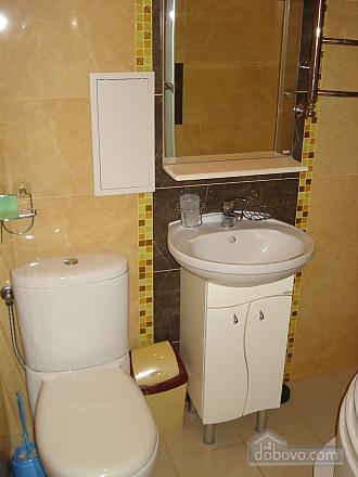 Cozy in Truskavets, Zweizimmerwohnung (94375), 008