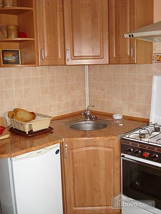 Cozy in Truskavets, Zweizimmerwohnung (94375), 012
